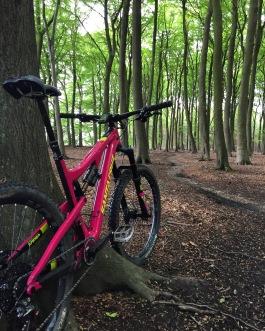 20th May First ride, at Sherwood Pines